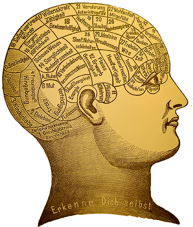 psychology anthropology and a science of human beings  the  phrenology