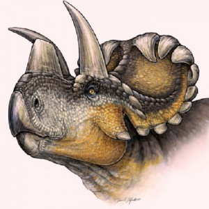 Artistic reconstruction of the newly discovered Wendiceratops pinhornensis. Image by  Danielle Dufault 2014.